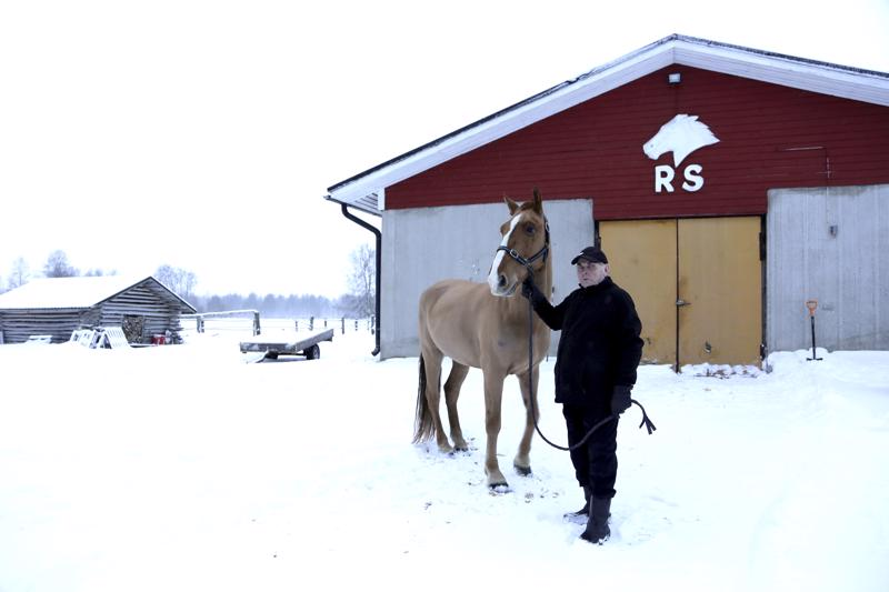 Reino Salmelan valmentamat Villiarin pojat Temetrius (kuvassa) ja Sillankorvan Uljas nappasivat komean kaksoisvoiton Kaustisen lounasraveissa. Arkistokuva.