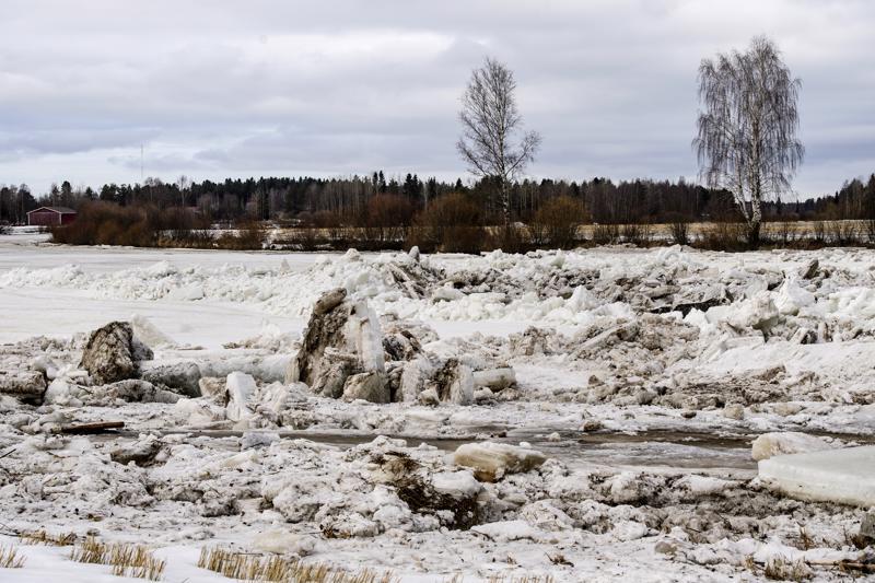 Pioneerit hälytettiin viime keväänä avuksi Alavieskaan. Toista kilometriä pitkää jääpatoa ei kuitenkaan ryhdytty räjäyttämään.