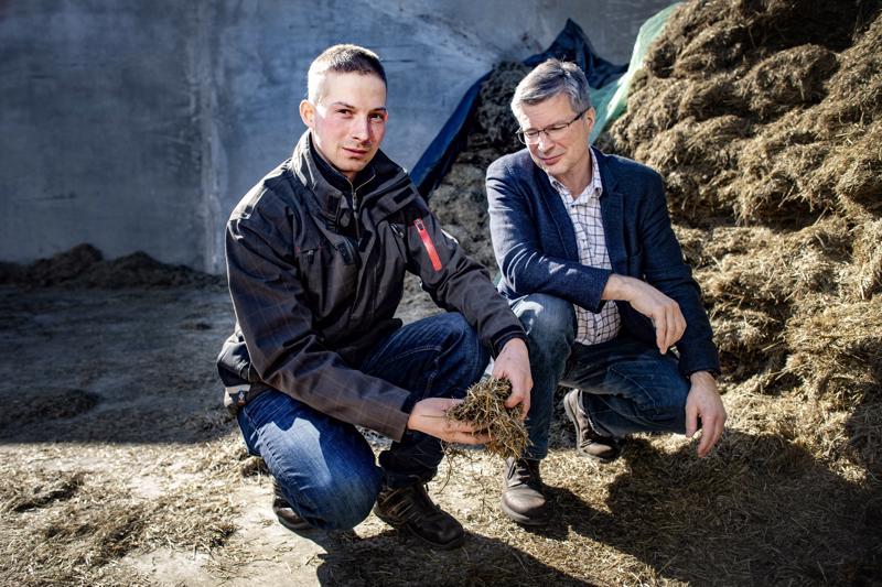 Nurmenviljelyn johtava tutkija Perttu Virkajärvi Lukesta kehuu maitoyrittäjä Timo Lankilan säilörehun laatua. Onnistunut sato sitoo tehokkaasti hiiltä maaperään.