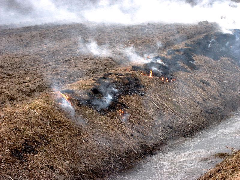 Maasto on nyt erittäin kuivaa, joten pelastuslaitos kehottaa varovaisuuteen kulotuksen kanssa. Arkistokuva.