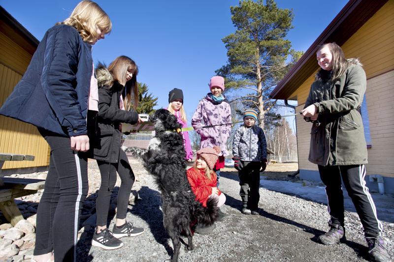 4H:n eläinkerhon ohjaajat Neea Saari ja Neea Pystö sekä eläinkerholaiset Fanni Mankinen, Juulia Isopahkala, Linda Näveri ja Teo Anttiroiko antoivat koirankeksejä Henna Similän Orion-koiralle.