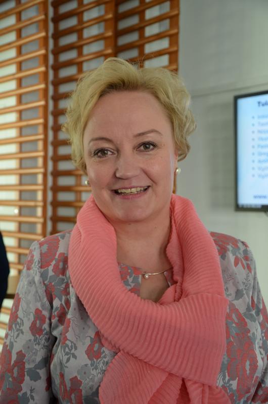 Elsi Katainen hakee jatkoa hyvin alkaneelle työlleen EU:n parlamentissä.