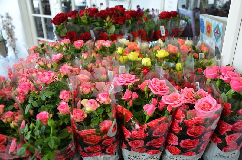 Äidit rakastavat ruusuja.