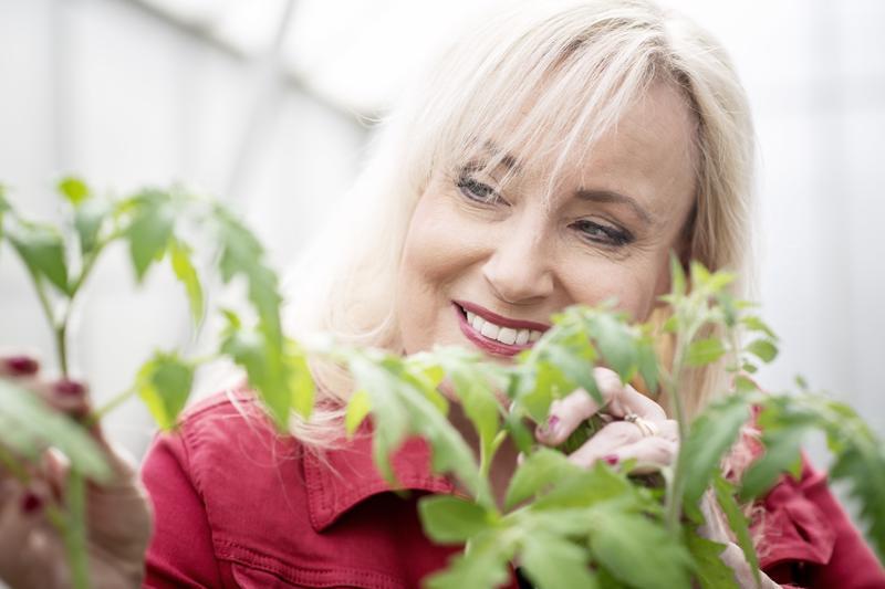 """""""Aloittelijan kannattaa muistaa, että tomaatti antaa paljon anteeksi, vaikka onkin tarkka kasvuolosuhteistaan"""", Sonja Lumme tietää."""