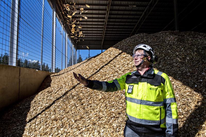 Kokkolan Energia Oy:n toimitusjohtaja Mikko Rintamäki juuri laajennetulla polttoainekentällä. Hakkeen ja muun puuperäisen polttoaineen merkitys kasvaa energiantuotannossa.
