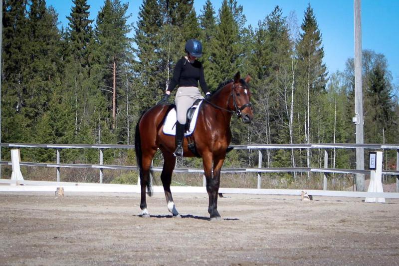 Pegasos Riding Teamia edustava Eveliina Kirjava ja Vitrazas tulivat ensimmäiseksi luokassa 1, käynti -ravi.