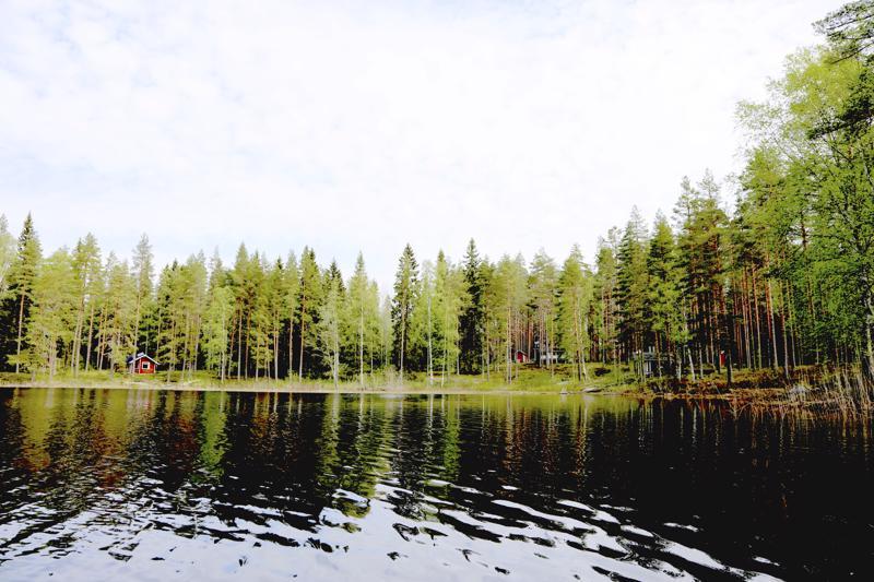 Kauniston kämppä on Kokkolan kaupungin omistuksessa ja sitä vuokrataan vain kokkolalaisille. Kämppä on metsäinsinööri Ahti Räinän mukaan vähällä käytöllä.