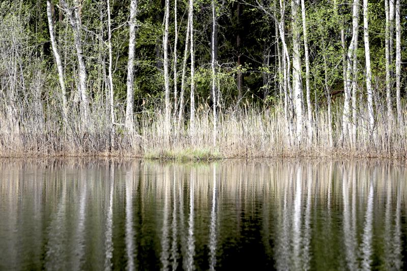 Veden pinnan keväisen korkeuden voi nähdä kortteesta, johon se on piirtynyt.