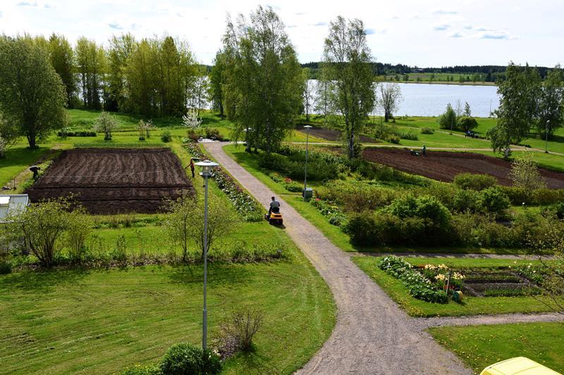 Paakkilan puutarha kunnostettiin kymmen vuotta sitten pusIkoituneesta joutomaasta takaisin sadan vuoden takaiseen kukoistukseen.