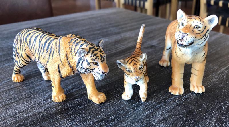 Tiikerit löysi uuden kodin.