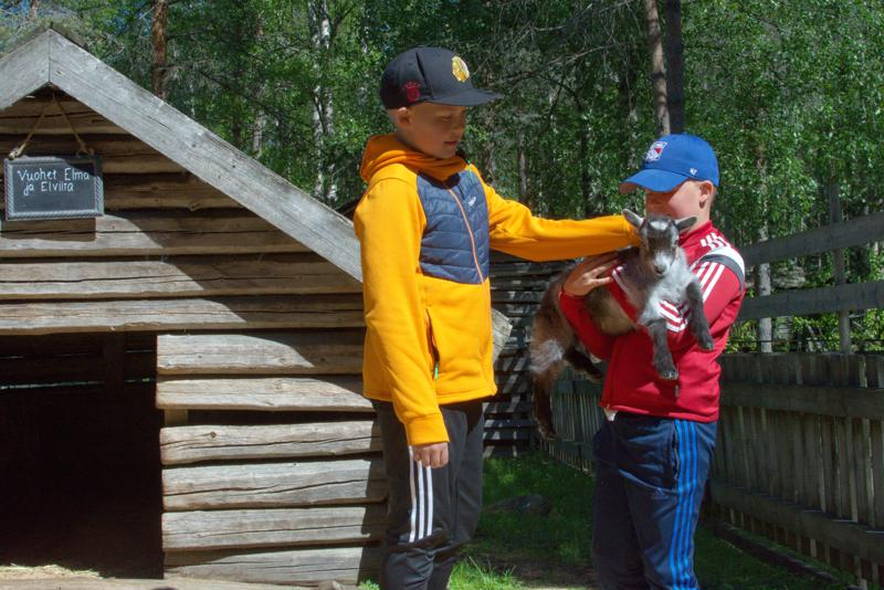 Veljekset Luka ja Jimi pääsivät vuohien aitaukseen silittämään kilejä.
