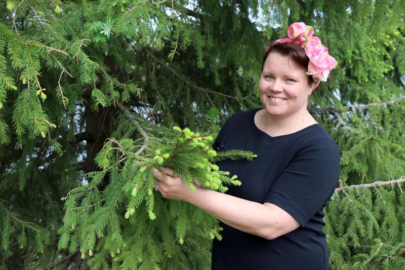 Miina Aronen kertoo, että villiyrttien keräämisen voi aloittaa vaikkapa kuusenkerkistä, sillä ne on helppo tunnistaa varmuudella oikeaksi kasviksi.