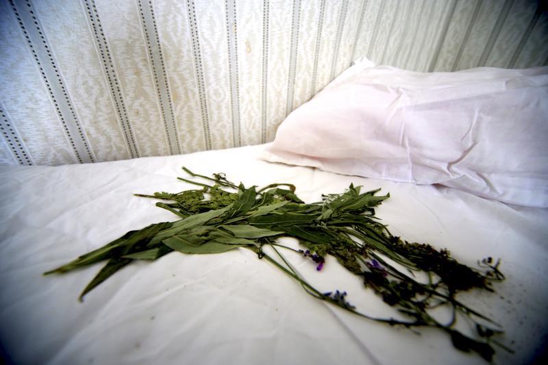 Kylähullujen juhannusjakson jatkot voi katsoa Instagramista. Siellä testattiin juhannustaikoja, muun muassa perinteinen kukkien kerääminen tyynyn alle.