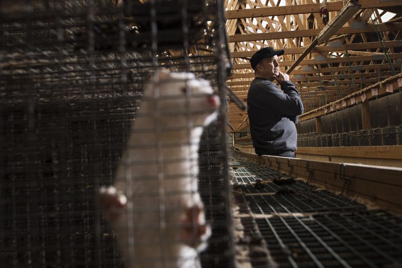 Turkiselinkeinossa on totuttu katsomaan kauas. Yrittäjä Jari Isosaari luottaa viidettä vuotta jatkuneen laman päättyvän pian. -Tunnelma oli toinen viime huutokaupassa ja nahat lähtivät varastosta todella nopeasti, Jari Isosaari kertoo.