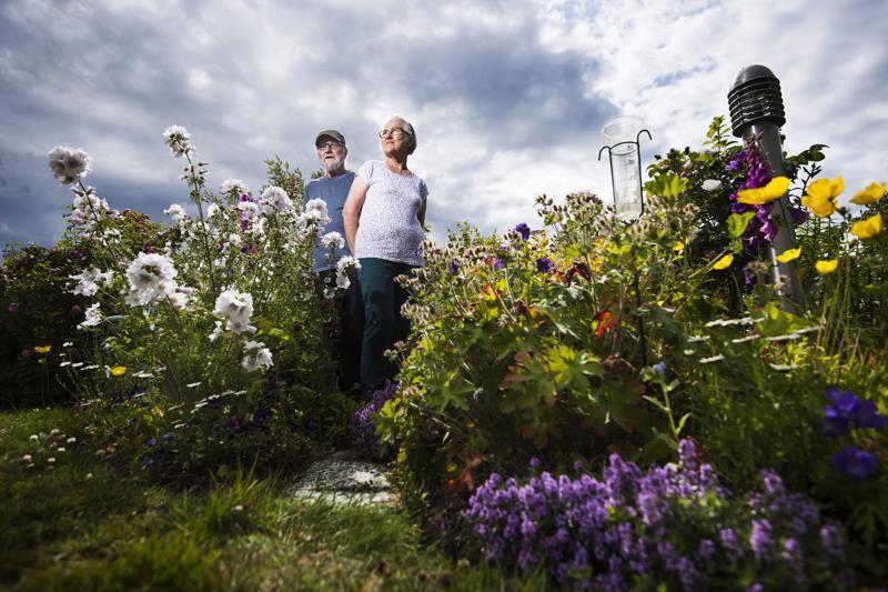 Puutarhan hoitaminen on Anja Hackspikin ja Jorma Okkosen yhteinen harrastus. Työn tuloksesta he saavat nauttia nyt, kun monen kukan kukinta on parhaimmillaan.
