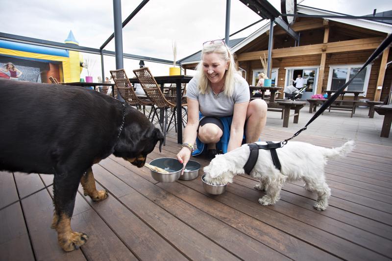 Yrittäjä Hanna Saari toivottaa koirat tervetulleiksi Surffariin ja Sandy Keltiin. Surffarista löytyy koirille oma menu, jota Diiva ja Elli pääsivät testaamaan.