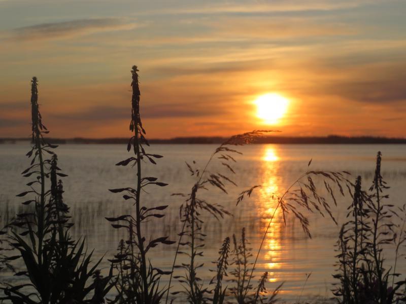 Aamu Ullavanjärvellä.