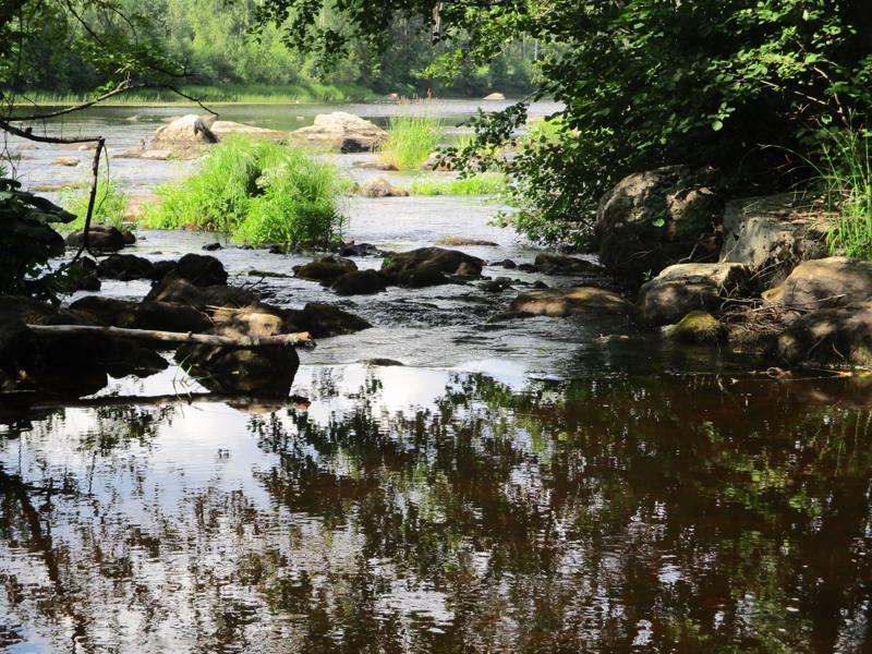 Helteinen päivä jokiuomassa.