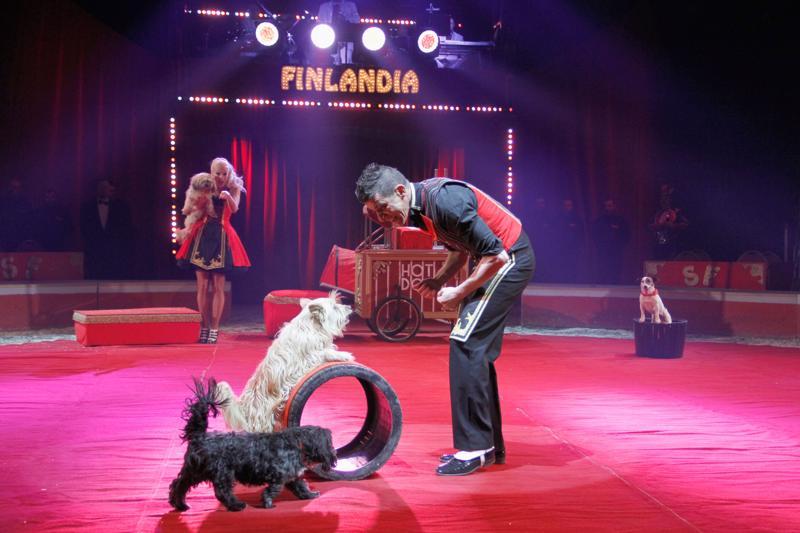 Pat Clarrison and the Hotdogsin ohjelmanumero ei ole koiranäyttelyn jäykkyyttä nähnytkään vaan lavalla pidetään hauskaa.