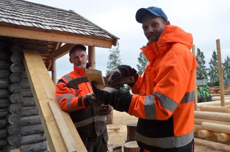 Tervatynnyrin valmistuksessa tarvitaan monelaisia työkaluja. Tässä Eetu Honkala katsoo, että onko tynnyriin tulevassa puussa oikea kaarevuus. Isä-Risto seuraa vieressä.