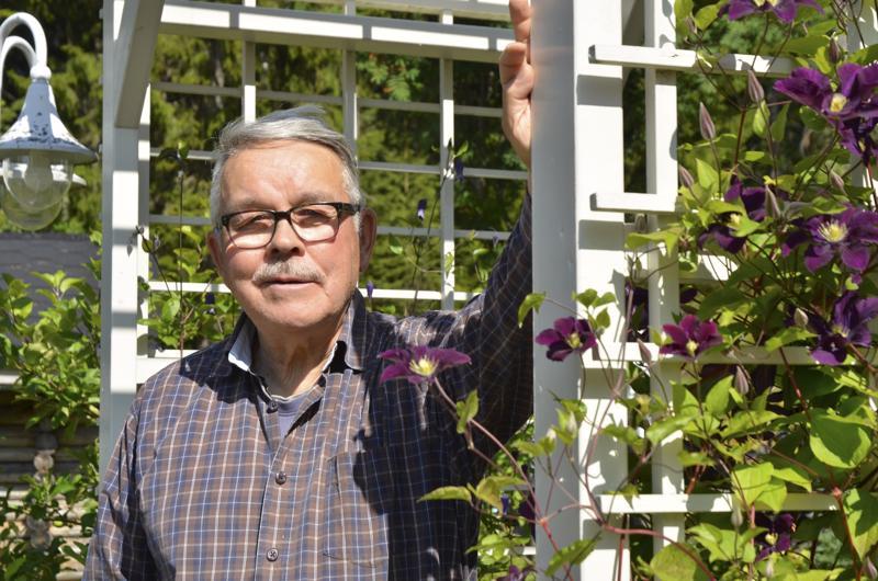 Osmo Anttila on itse rakentanut pihalleen valkoisen portin, jota vasten komean violetit jalokärhöt saavat kasvaa.