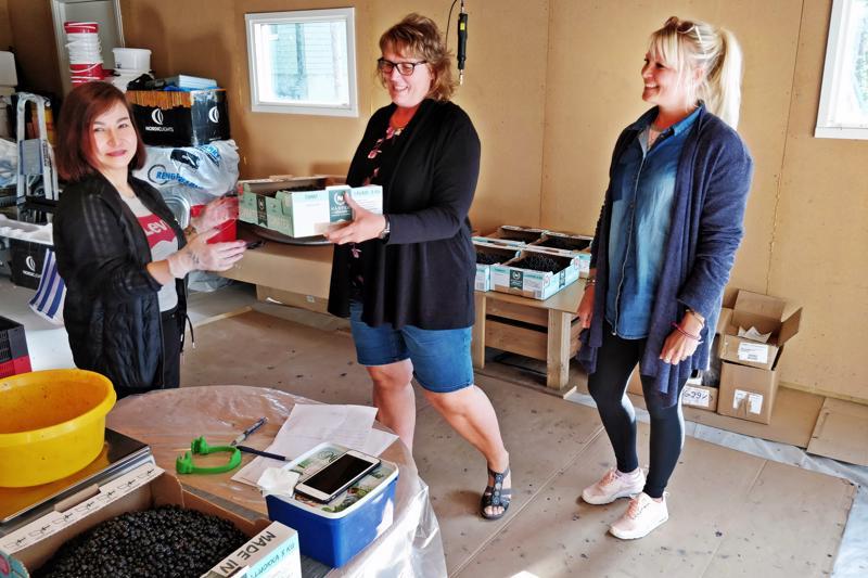 Tina Nguyen palvelemassa mustikan ostajia, Maria Wärniä Ala-Ähtävältä ja Sunneva Niskasta Luodosta.
