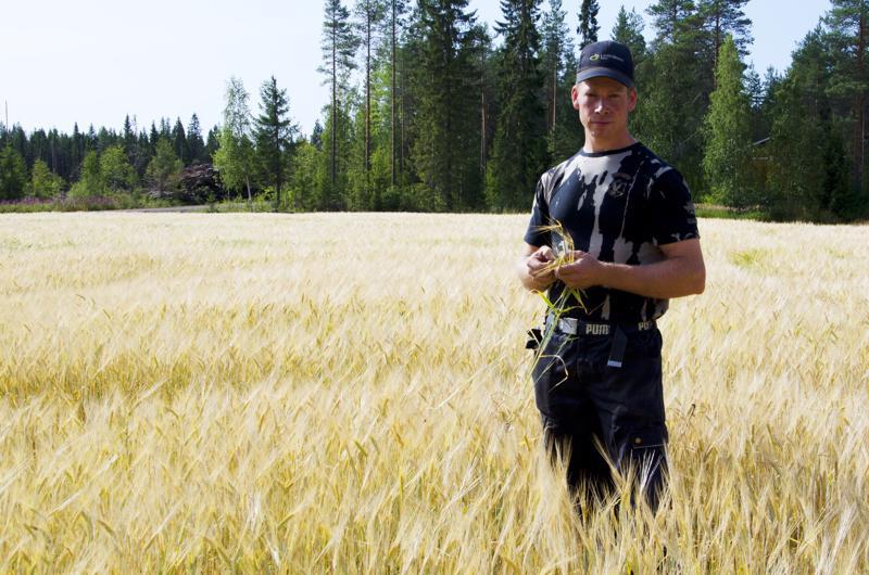 Ylivieskalainen viljatilan isäntä Tuomas Saari sanoo, että kuivia vuosia on ollut ennenkin, mutta se mikä oli ennen poikkeuksellista, on nykyään normaalia.