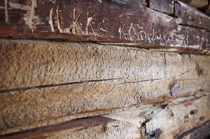 Hirsiin ovat jättäneet jälkensä niin eläimet kuin ihmiset yli sadan vuoden aikana.