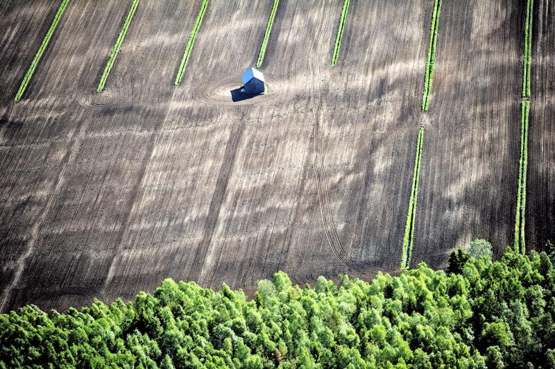 Tilusjärjestely voi parhaimmillaan vähentää tilojen tarvetta raivata uutta peltoa.