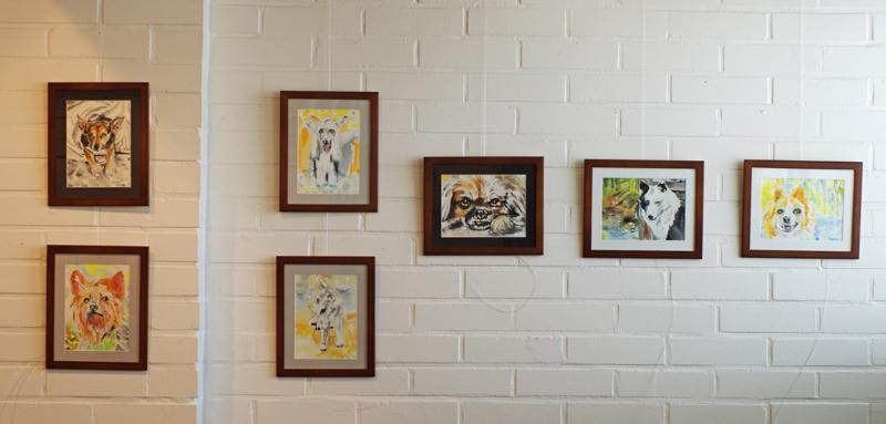 Tillarigalleriassa on esillä viitisenkymmentä koira-aiheista akvarellia.