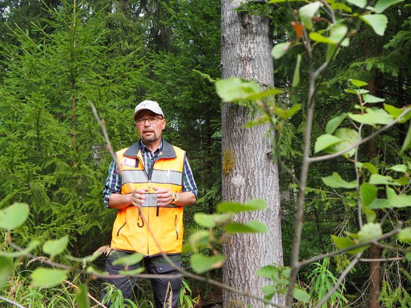 - Tavoitteena on, että niiden alueiden maanomistajat pystyvät hyötymään omaisuudestaan samalla säilyttäen liito-oravalle elintärkeitä elinalueita, selostaa kaupungin metsätalousinsinööri Ahti Räinä.