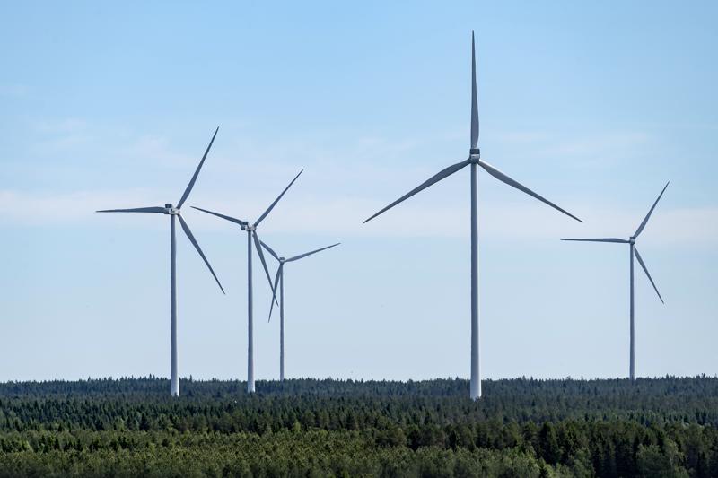 Google ostaa tulevaisuudessa sähköä Kalajoelta, Kannuksesta ja Kokkolasta. Mutkalammin tuulivoimapuiston rakennustöiden suunnitellaan käynnistyvän alkuvuodesta 2021 ja suunniteltu käyttöönotto tapahtuu seuraavan vuoden lopussa. Kuvassa tuulivoimaloita Kalajoella.