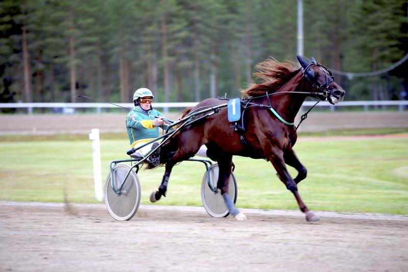 Timo Salmelan valmentama Let's Go Legacy on Kaustisen T4-pelin avainhevosia.