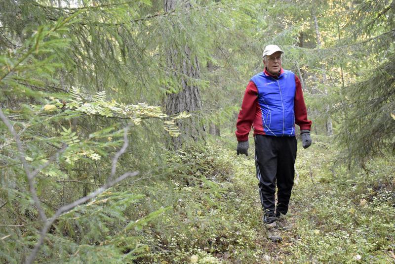 Kivenheiton päässä oleva Vanhan sataman metsä on ollut Jukka Aaltosen toinen koti.