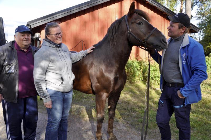Metkutus on aina ollut valmis lähtemään reissuun, kuten Teija Lampela ja Juha-Matti Paavolakin. Hanssi Paavola ( vas. ) huolehtii kotioloissa orin hyvinvoinnista.