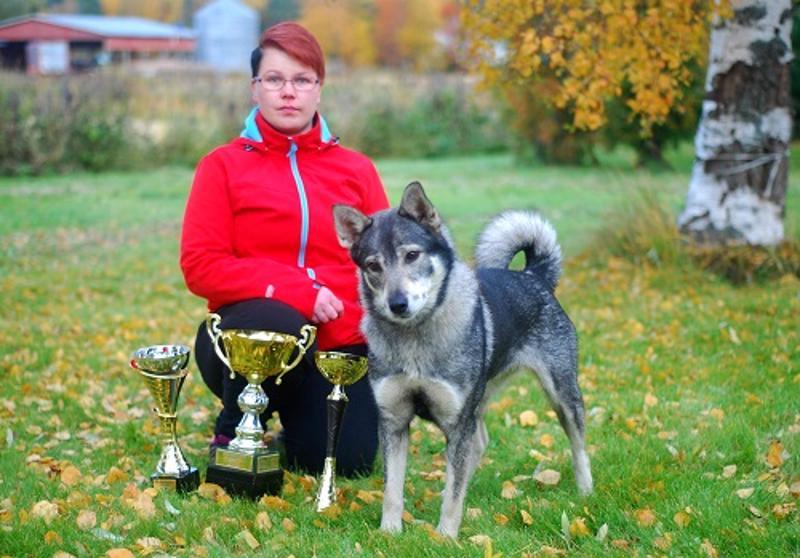 Kolleem Cara ja Elina Paananen voittivat Kannuksessa hirvihaukkukokeessa narttukoirien kisan.
