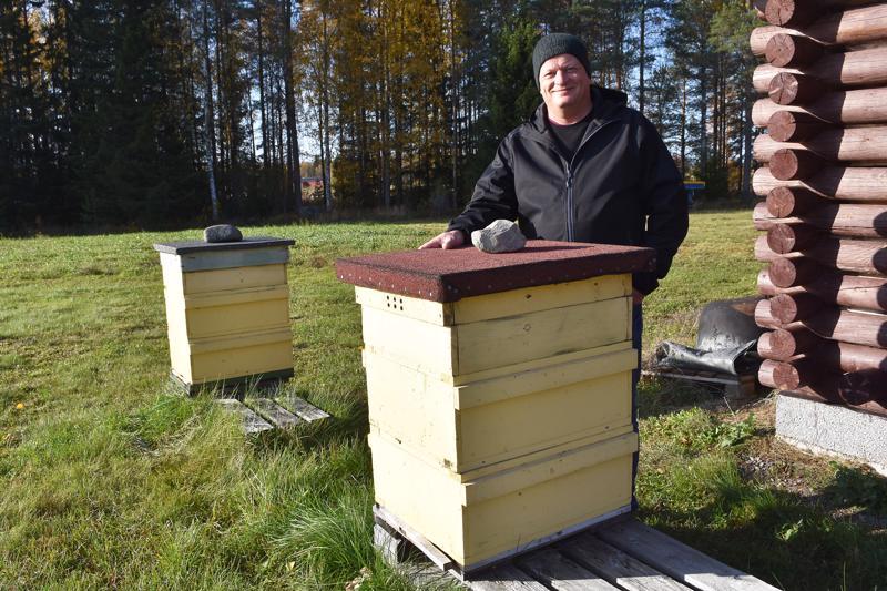 Mehiläiset eivät liiku lämpöeristetyistä pesistään alle 10 asteen lämpötilassa. Vesa Torkkola kertoo, että talvella pesiä voidaan suojata tuulelta ja tuiskulta kiertämällä niiden ympärille vielä tervapaperia.