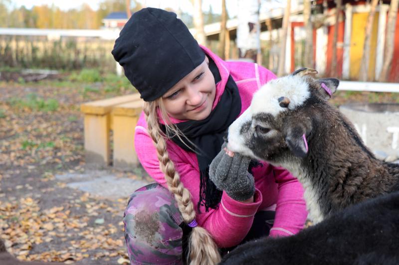 Susanna Hakala-Virkkalan tarjoamat herkut maistuvat Mantalle.