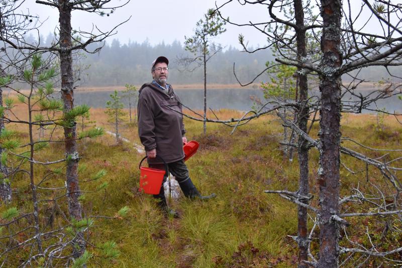 Voimaa. Kannuslainen Heikki Saunavaara viihtyy luonnossa.  - Joka reissulta luonnosta palaa eri mies takaisin kotiin.