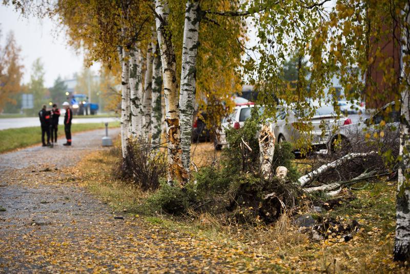 Nivalan ammattiopiston tontilla sijaitseva koivu katkesi perjantaiyön ulosajossa. Auto vietiin pois tapahtumapaikalta varhain aamulla.