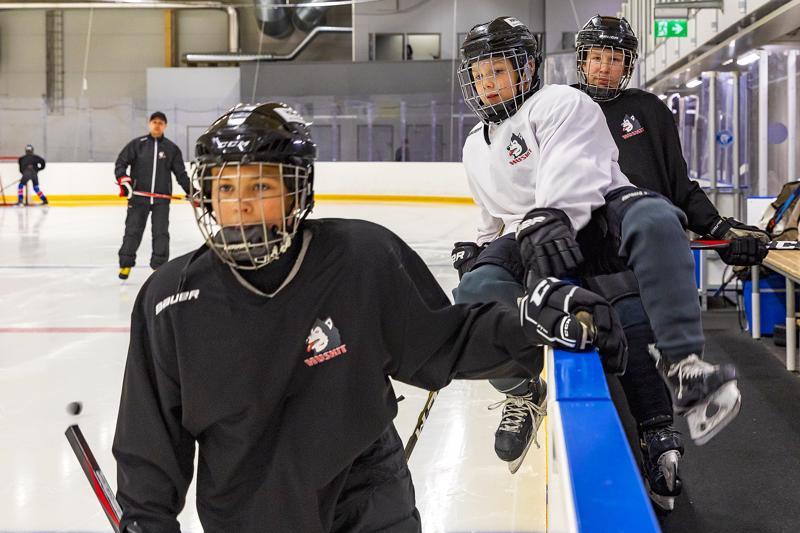Huskit starttaa Suomen Jääkiekkoliiton lanseeraaman Easy Hockeyn omalla nimellään Huskit Harraste.