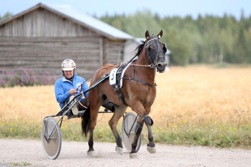 Jarmo Hirvikosken ja Juha-Matti Paavolan (kuvassa) omistama Siron Peli voitti kylmäveristen mailin ryhmän väkivahvan juoksun jälkeen.