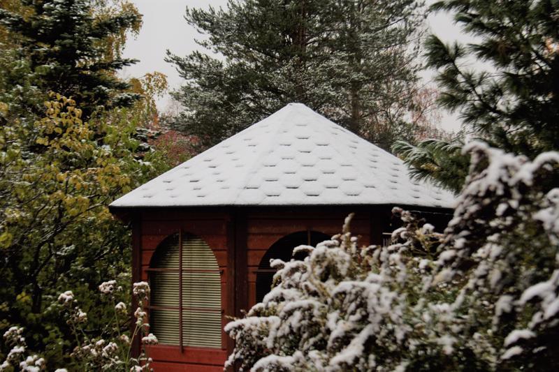 Valkoista katolla, puissa ja pensaissa 13.10.
