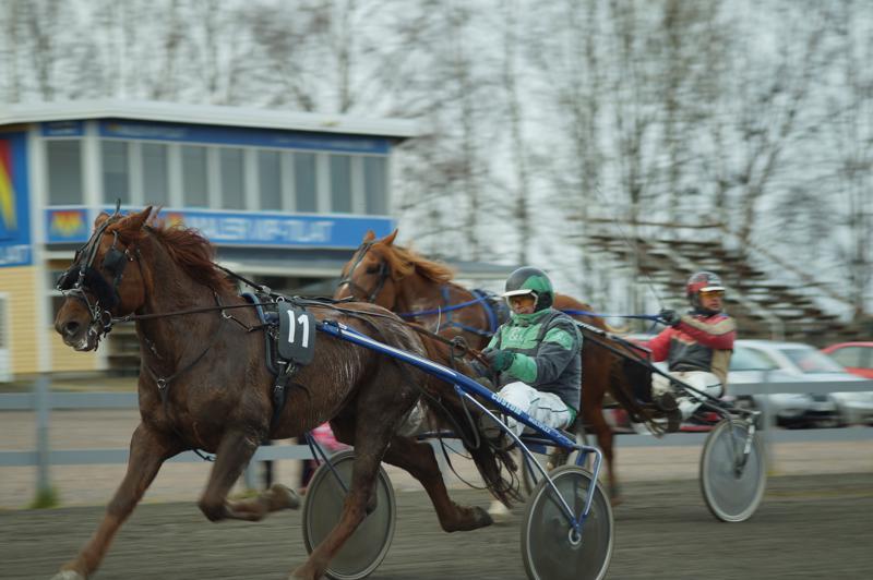 Jukka-Pekka Niskanen ajama Meren Ritari voitti suomenhevosten kovimman lähdön Ylivieskassa. Kauden avausvoitto tuli 29:ssä startissa.