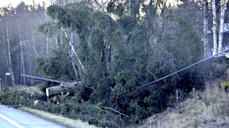 Perjantain ja lauantain välisen yön syysmyrsky kaatoi puita samaan tapaan kuin Eino-myrsky marraskuussa 2013.