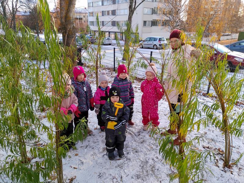 Tulliharjun päiväkodin lapset leikkimässä pajumajassa yhdessä päiväkodinjohtaja Kaisa Wacklinin kanssa.