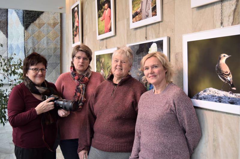 Margareta Sarvela, Lis-Marie Tuuf-Nylund, Gunilla Björklund ja Laila Suvanto ovat Jakobstads Fotoklubbin aktiivisia jäseniä.