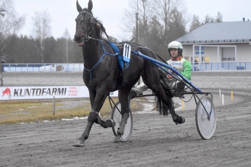 Ville Pohjolan ja Petri Klemolan yhteistyö tuo voittoja. Kaustisella juhli Shadow Leader (kuvassa) ja Kuopiossa Temptation Leader.