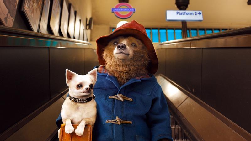 Lontoon liukuportaissa on kuljettava koira sylissä.