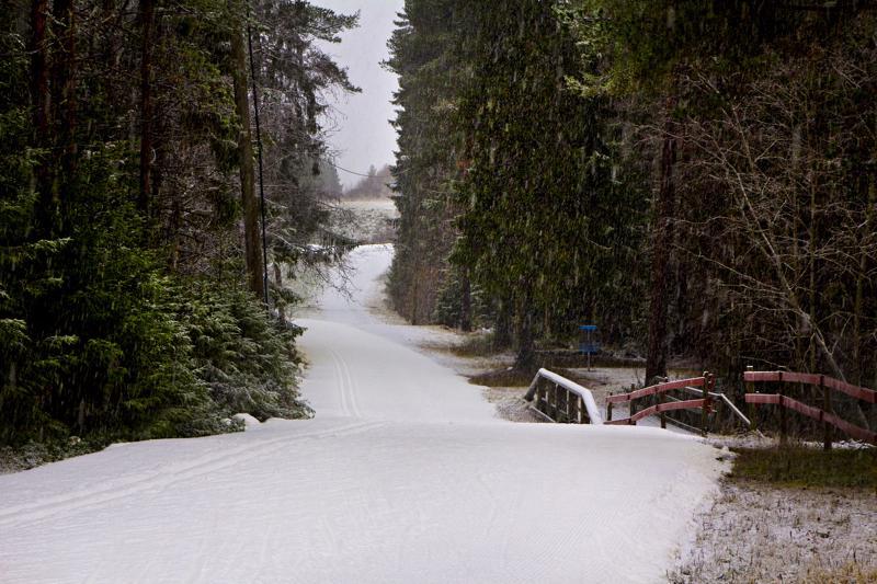 Hiihtomajalle on saatu tehtyä latua noin 1,4 kilometriä Junkkareiden varastoiman lumen ja tänä talvena tehdyn tykkilumen avulla. Tiistaina taivaalta tuli rännänsekaista lunta.